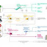 Schéma traitement des déchets Vernéa