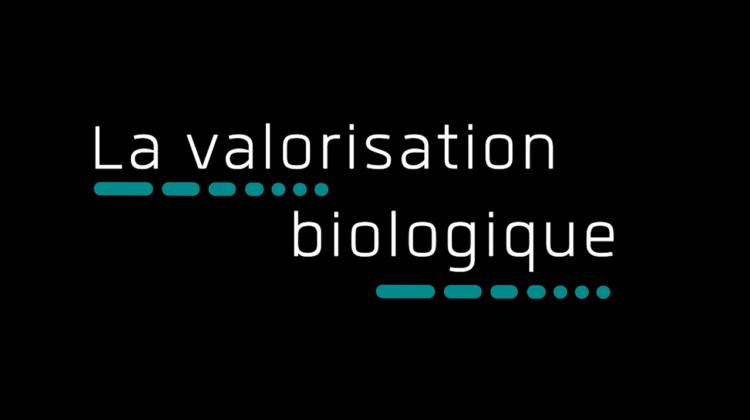 Vernéa – Valorisation biologique