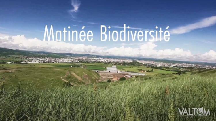 Matinée Biodiversité – Puy-Long